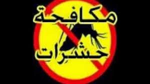 مكافحة حشرات شرق الرياض