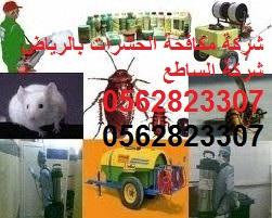 شركة مكافحة الحشرات شمال الرياض