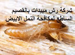 رش مبيدات حشرية بالقصيم