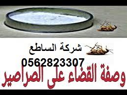 نصائح للقضاء علي الصراصير