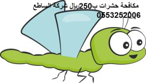 مكافحة حشرات ب250ريال